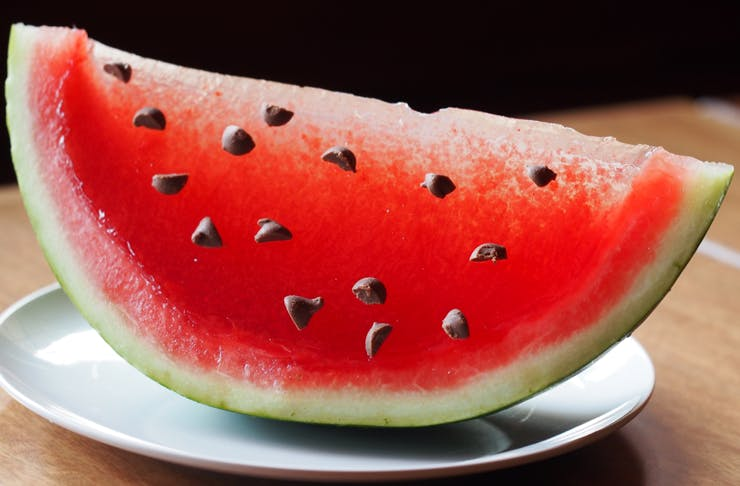 Jelly Water Melon Harajuku Gyoza