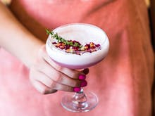 9 Of New Zealand's Best Artisanal Gins