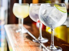 Gin Geeks Assemble, London's Famous Junipalooza Festival Is Coming To Sydney For The First Time