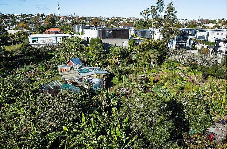 A view of Kelmarna Gardens - a sprawling urban community garden in the heart of Auckland City.