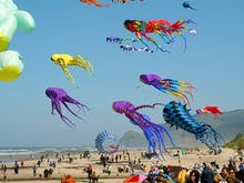 Redcliffe's Jaw-Dropping KiteFest Is On This Weekend!