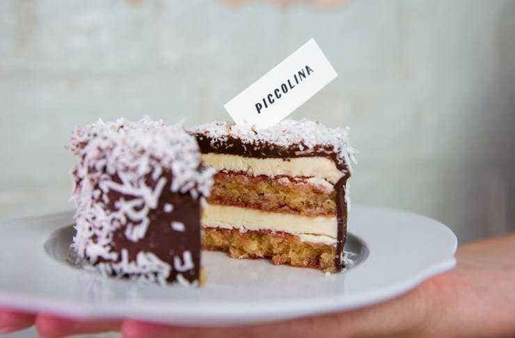 lamington-log