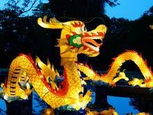 Get Your Glow On, Auckland's Lantern Festival Is Back Bigger And Better Than Ever This February