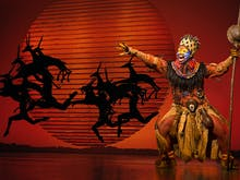 The Lion King Opens This Month So Nab Your Tickets While You Can