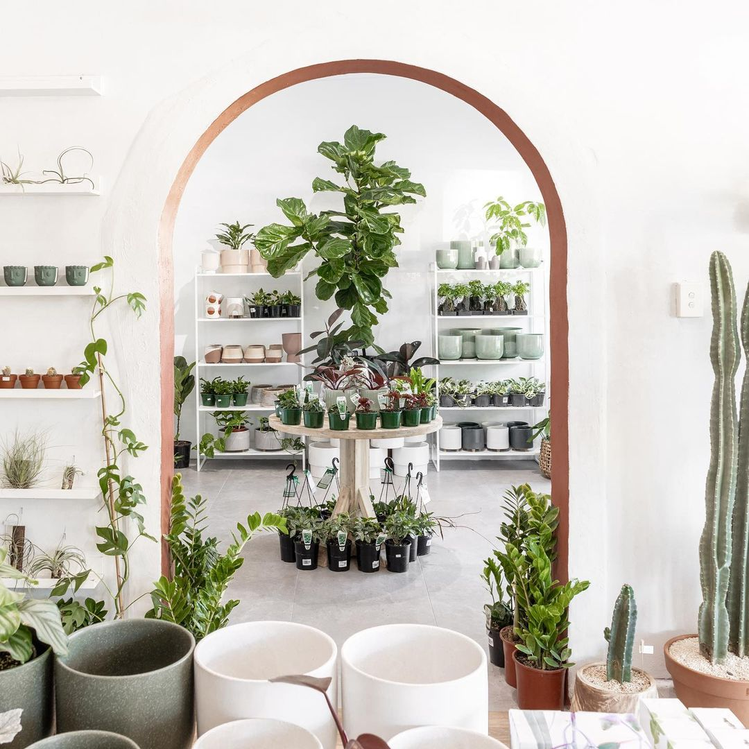 a shop filled with pots and plants