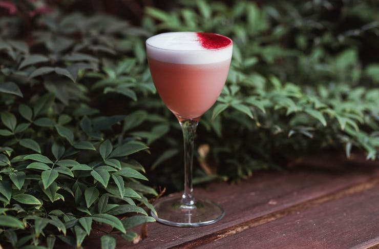 a beautiful hibiscus cocktail from the new Koh Samui Lone Traveller experience
