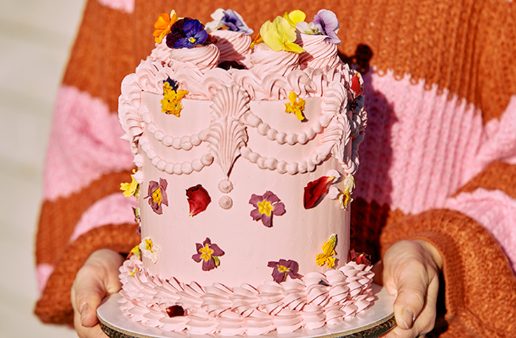 A large pink cake being held in two hands.