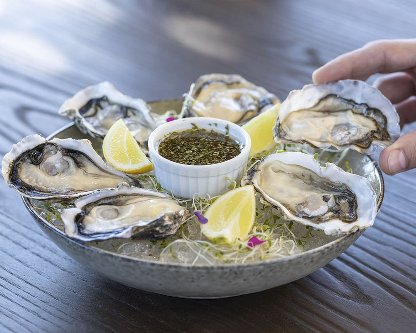 Oysters waiting to be devoured at Ma Maison.