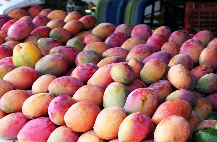 Mango shortage qld