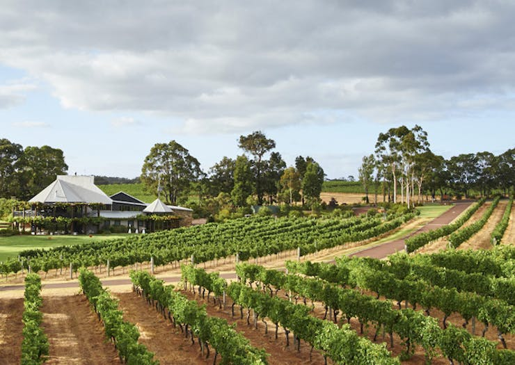 All The Best Margaret River Wineries You Should Have Been To