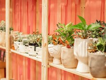 Shop Local For Christmas At This Insta-Worthy Pop-Up Market Hub In Perth