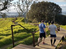 Lace Up, The Epic Maungawhau/Mt Eden Summit Boardwalk Has Just Opened