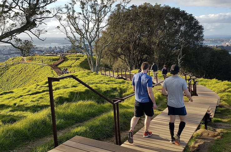 An image showing the new boardwalk at the Summit of Mount Eden