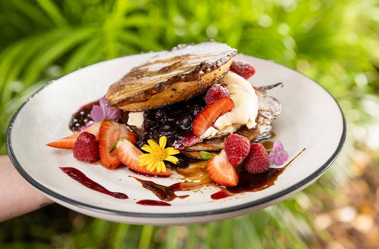 a plate of fruit laden frnech toast