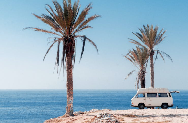 A white camper van is parked on a cliff, overlooking the ocean and under towering palm trees.