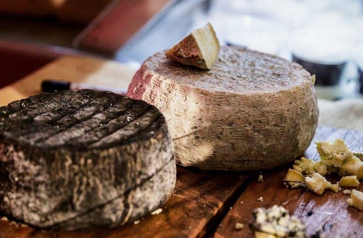 cheese-festival-sydney
