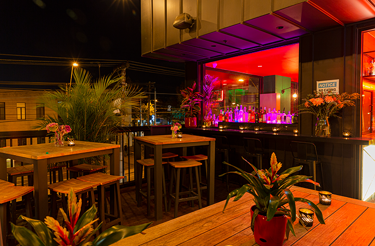 A rooftop bar drenched in warm lighting and covered with green plants.