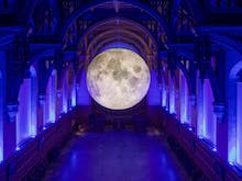 Museum Of The Moon Is Coming And We've Booked Our Tickets