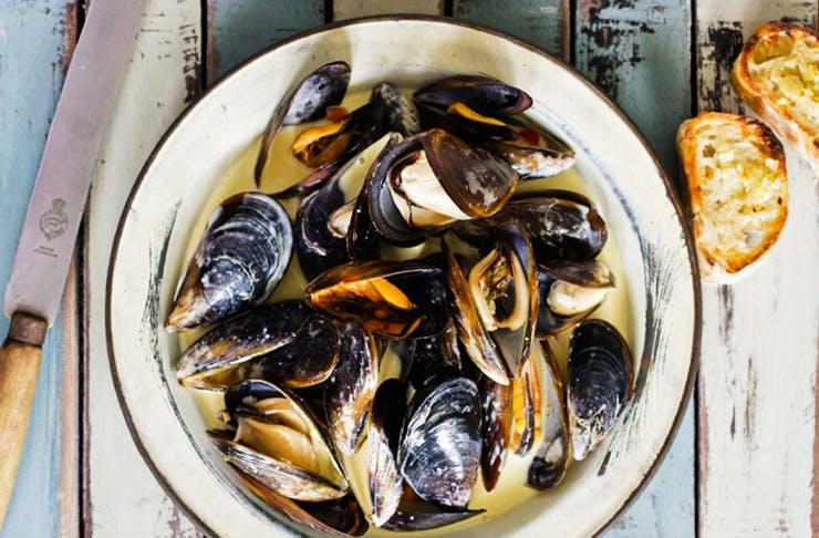 mussel-festival-brisbane