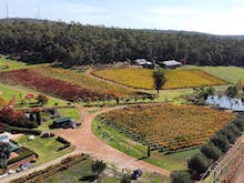 Get Out Of The City And Explore The Best Wineries And Cideries In The Perth Hills