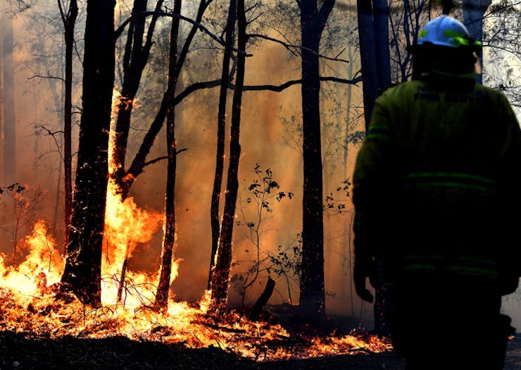 This Season Is Going To Be Catastrophic For Bushfires In NSW, Here's How You Can Help