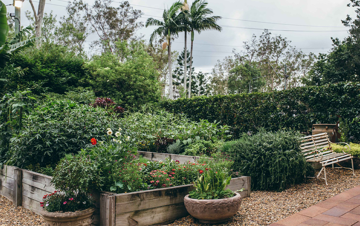 a garden bed at Brookfield Gardens