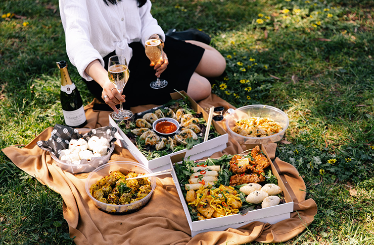 A yum cha picnic spread on a picnic rug in the grass.