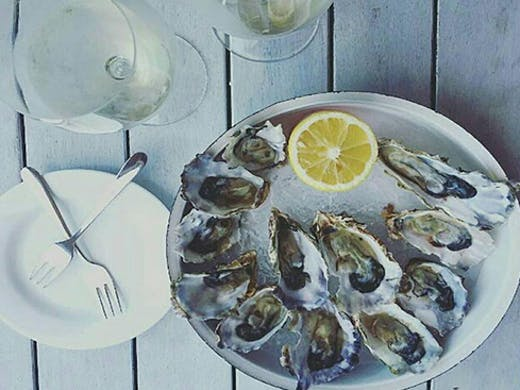 Auckland's Best Oyster and Steak house, Auckland's Best Oysters