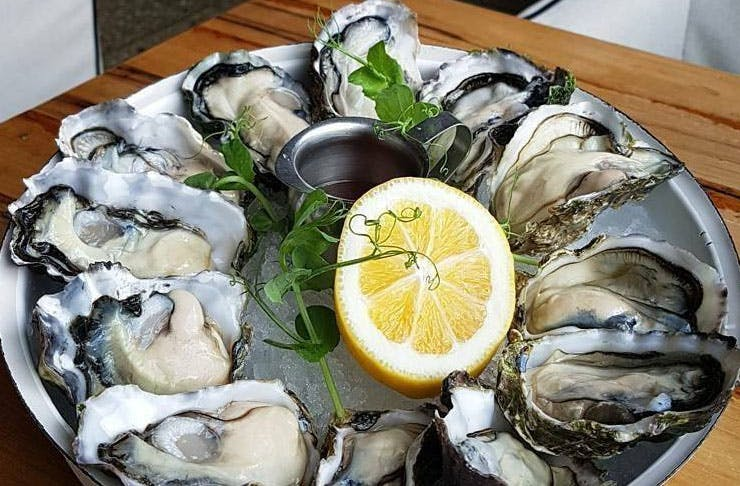 Where To Eat Oysters & Drink Champagne In Auckland