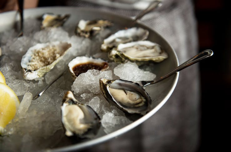 Holy Shuck! An Oyster Festival Is Coming