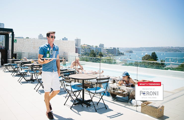 peroni what's trending in Sydney