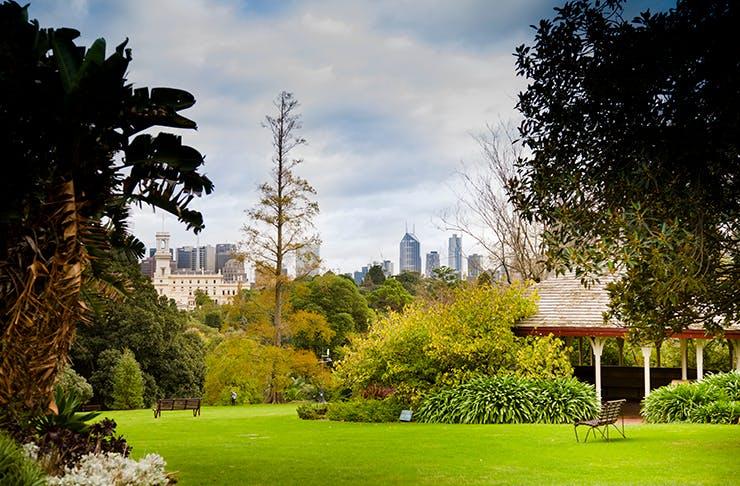 The Royal Botanic Gardens shining bright in the sunshine.