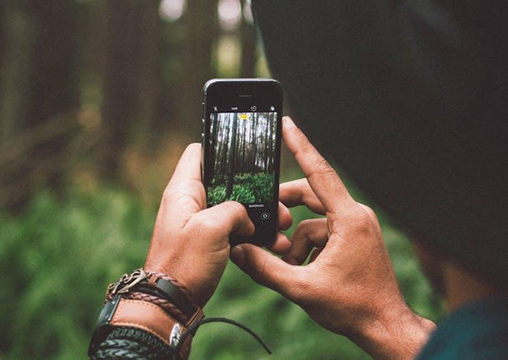 plant-net-app