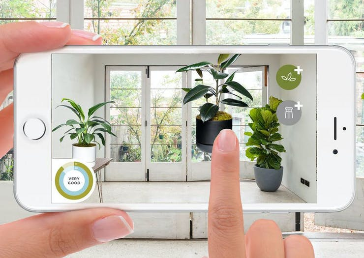We've Found The Best Indoor Plant App Ever Invented & It's Free!