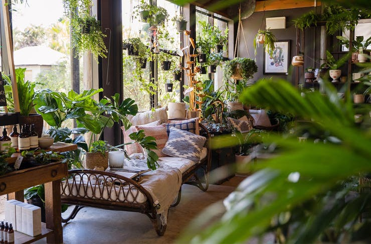 Plant Shops Brisbane