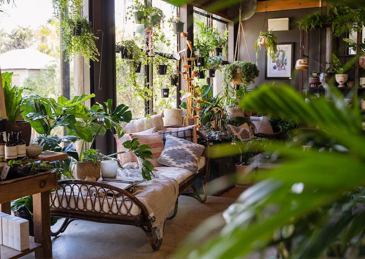 18 Of The Best Nurseries And Plant Shops In Brisbane To Feed Your Obsession