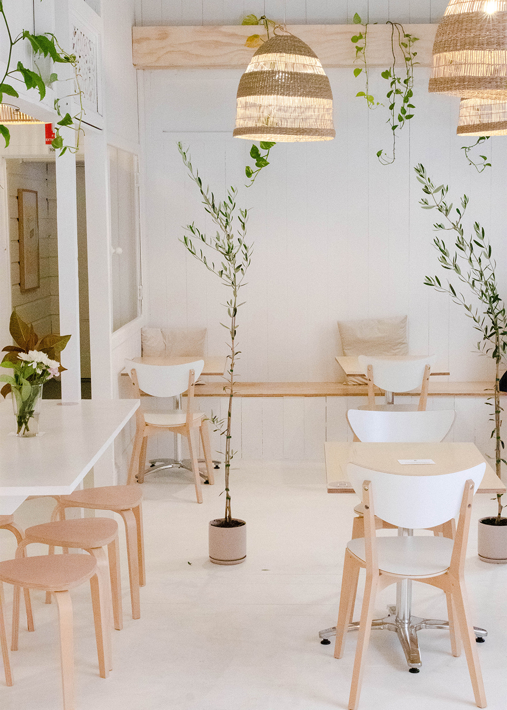 white interiors with plants at Plant Vibes Cafe