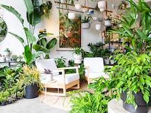Plantsmith