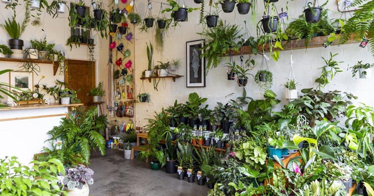 Where To Find Melbourne's Best Nurseries | Melbourne | Urban
