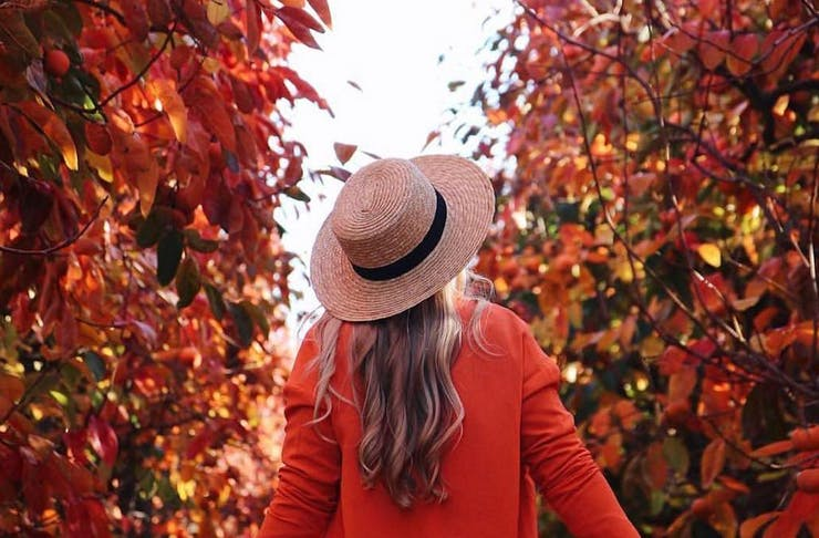 a woman dressed in a hat and red cardigan walks through Raeburn Orchards in the Perth Hills