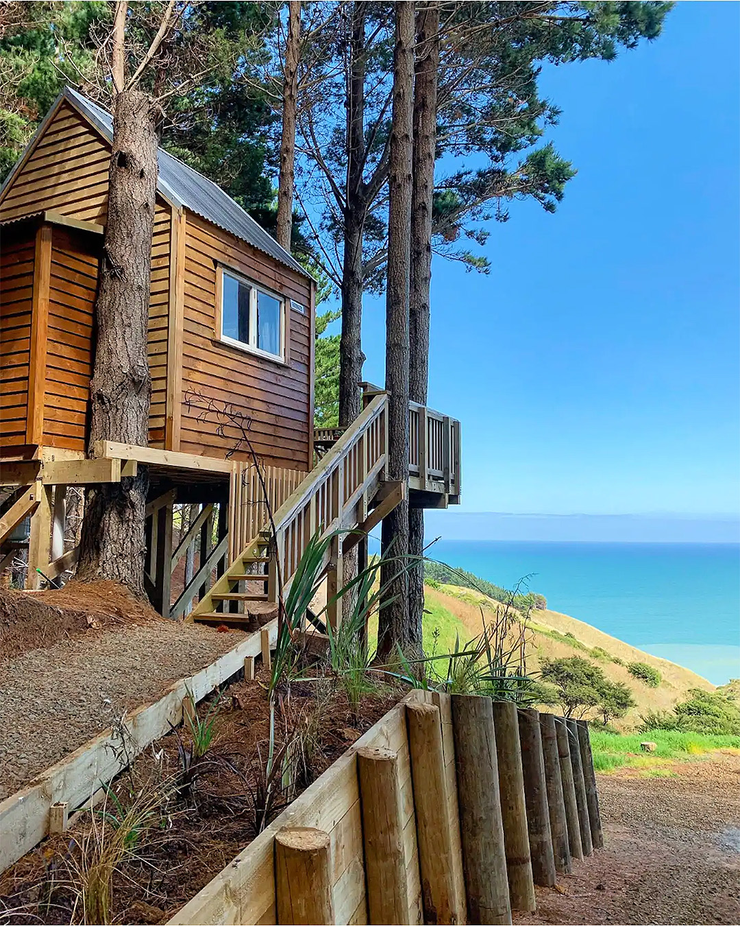 The tree house at Raglan with blue skies in the background.