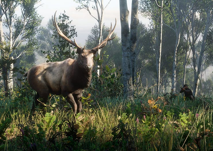Red Dead Redemption 2 Hunting Updates Are Out Here's What You Need To Know