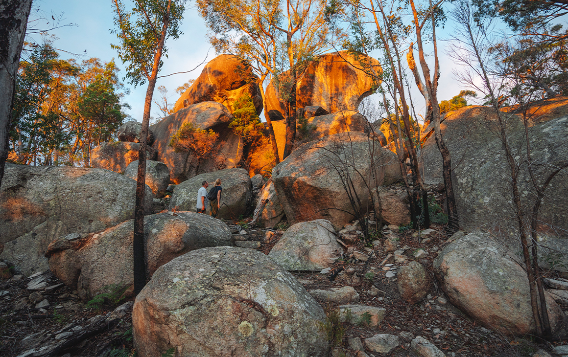 A hill covered in granite boulders