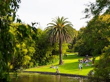 Take A Stroll Through The Reopened Royal Botanic Gardens From Next Week