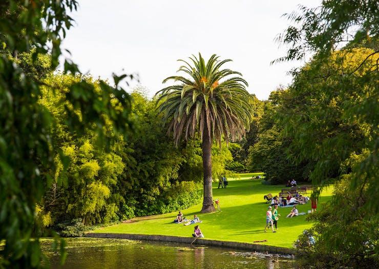 Take A Stroll Through The Reopened Royal Botanic Gardens From Next Week