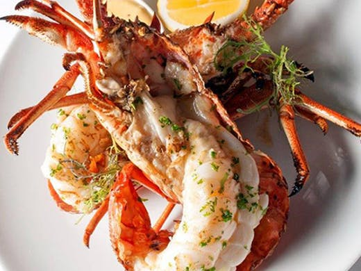 Best seafood in Auckland, Sails Restaurant review, Sails Restaurant menu, harbour view restaurant