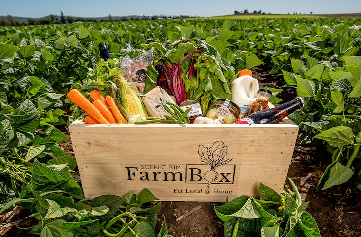 A wooden box filled with fresh produce, sitting in a farm field of green leaves
