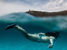 Discover New Zealand's Best Scuba Diving Spots