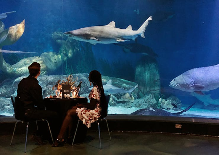 Round Up Ten Mates For A Private Dining Experience At Melbourne Aquarium