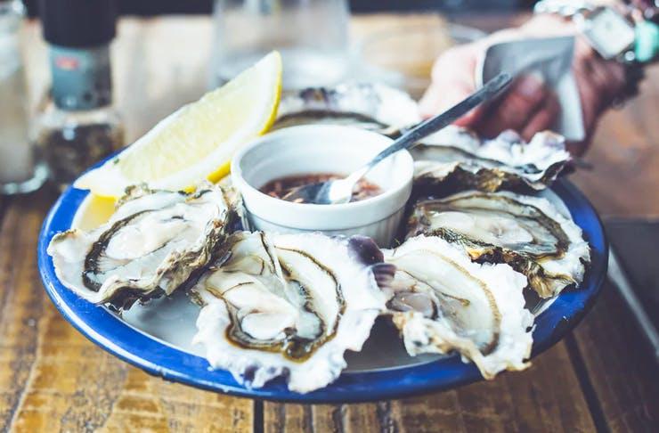 seafood-festival-sydney